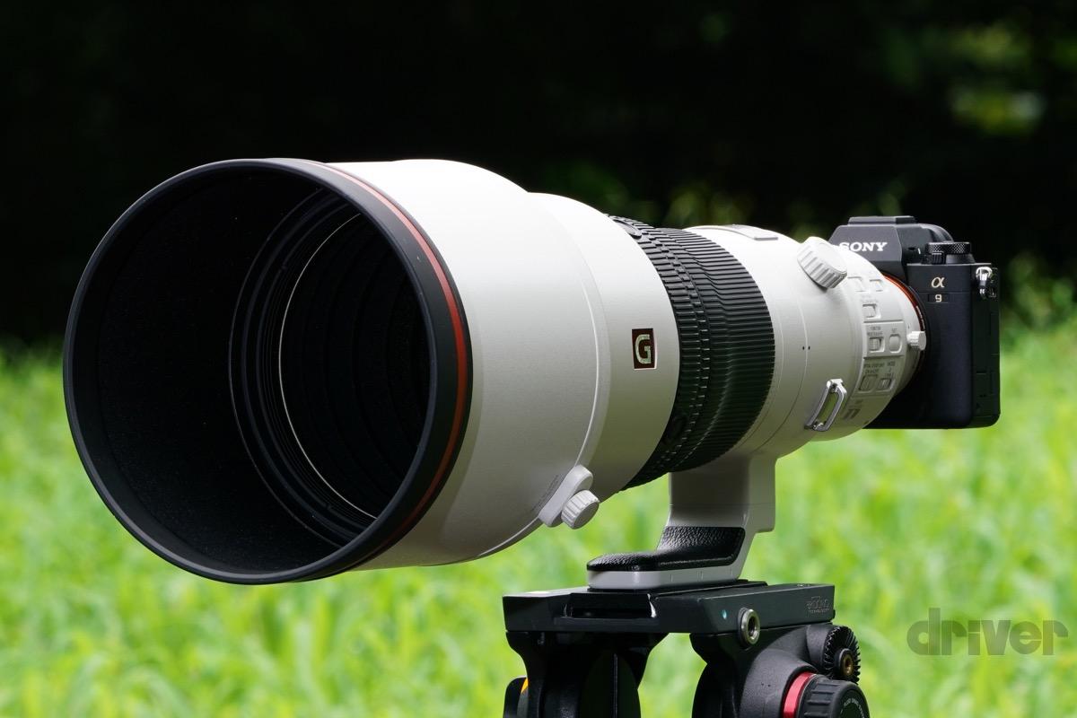 SONY α9Ⅱ + FE 600mm F4 GM